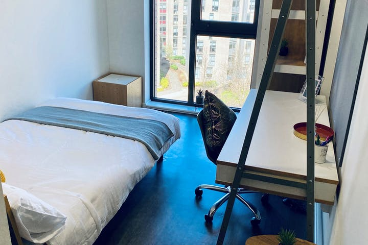 Bedroom and Window