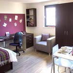 St-Davids-Swansea-Studio-Unilodgers