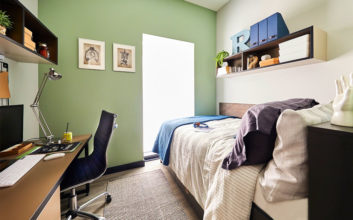 Basic American Zenith Intro Ii Bed Control