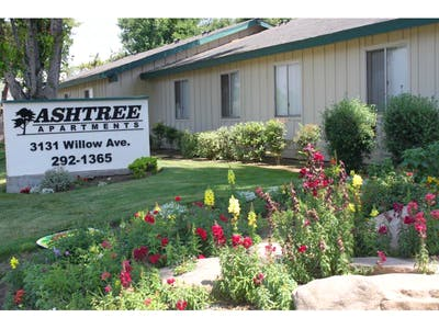 Ashtree Apartments